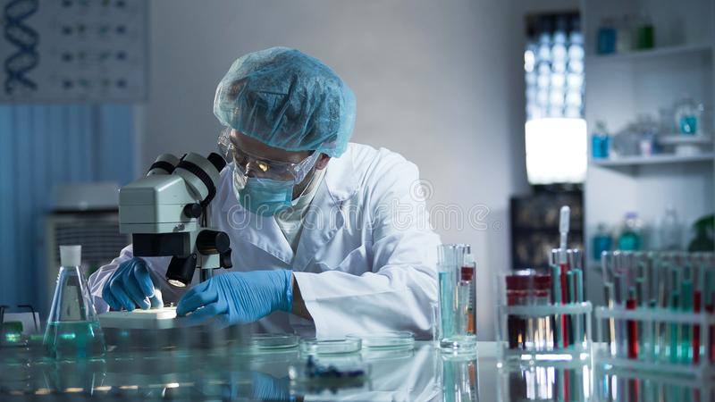 Medical lab worker examining laboratory glass with sample through microscope. Stock video stock photos