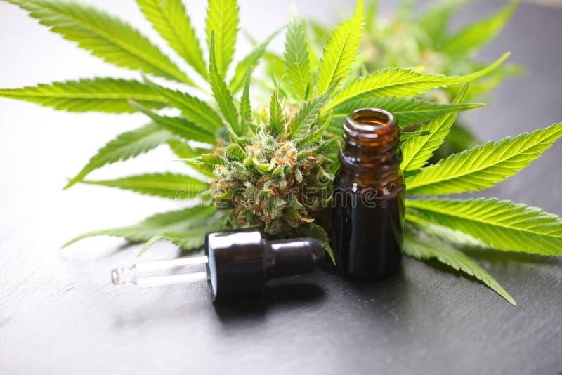 Medical marijuana cannabis cbd oil royalty free stock photo