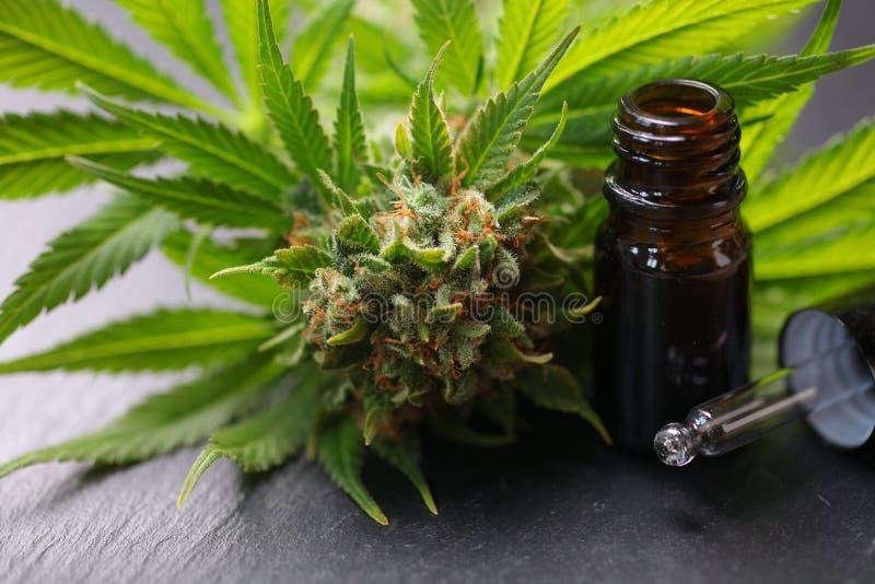 Medical marijuana cannabis cbd oil product royalty free stock photos