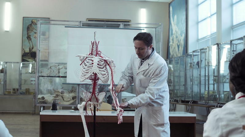 Medical Professor In Anatomy Class With Skeleton Stock Video Video