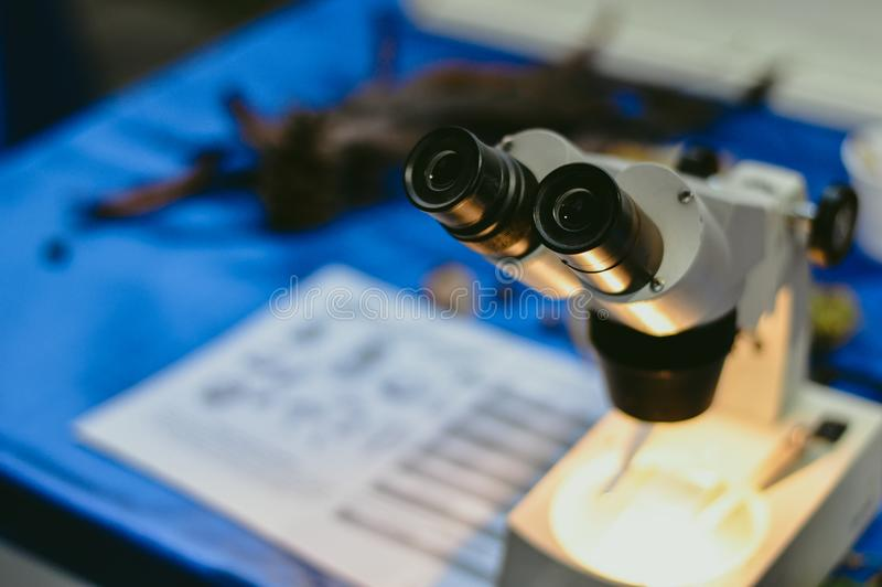 Close up of microscope lenses royalty free stock photo