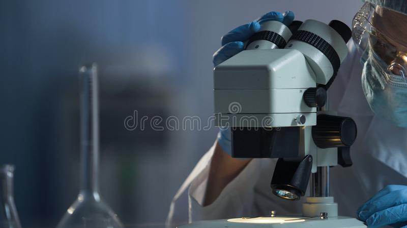 Medical scientist preparing surface of microscope for macro researching process royalty free stock photos
