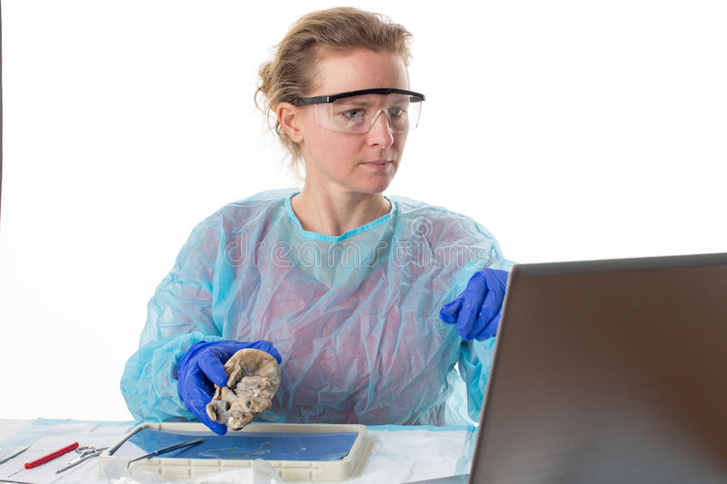 Medical student in anatomy class stock photos