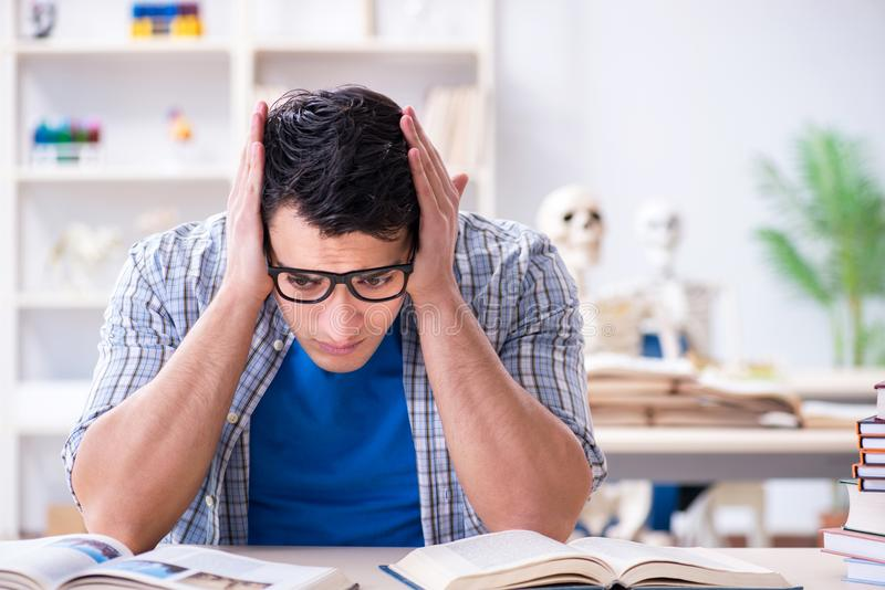 The medical student preparing for exams royalty free stock photos