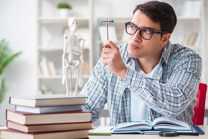 The medical student sitting at the lecture in university royalty free stock photos