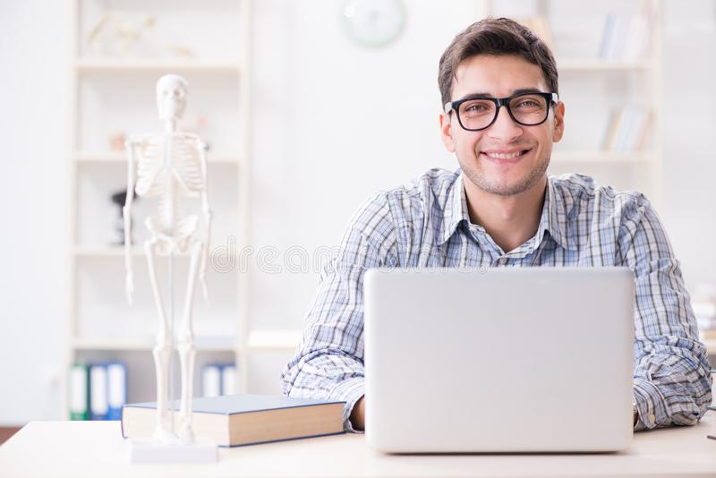 The medical student studing the skeleton royalty free stock photography