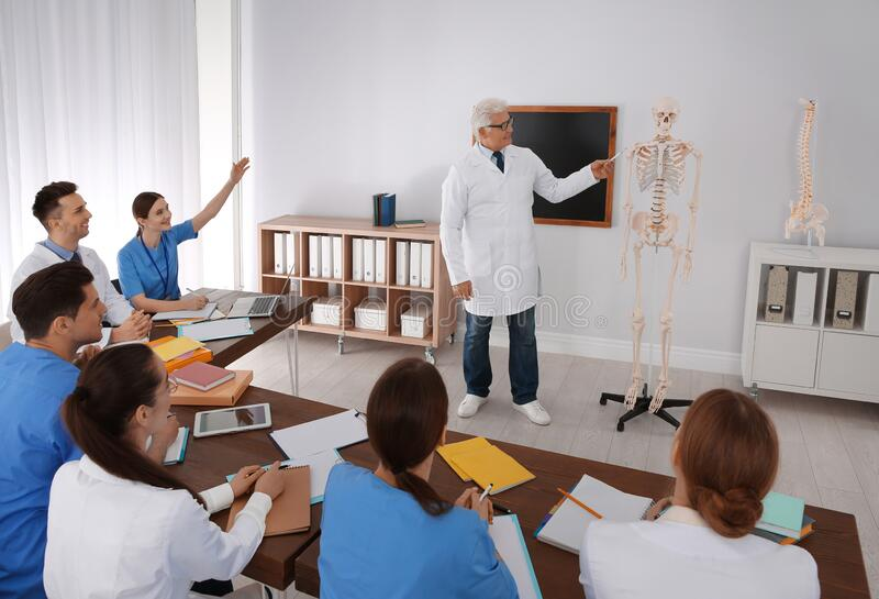 Medical students and professor studying human skeleton anatomy stock photography