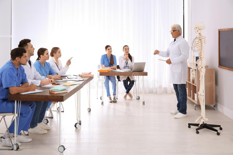 Medical students and professor studying human skeleton anatomy royalty free stock photos