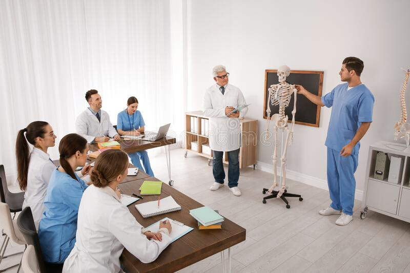 Medical students and professor studying human skeleton anatomy stock photo
