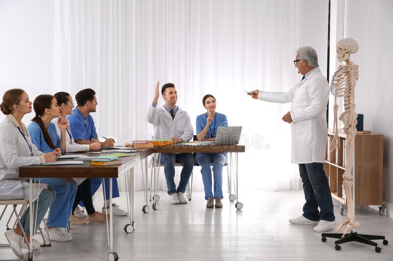 Medical students and professor studying human skeleton anatomy royalty free stock images