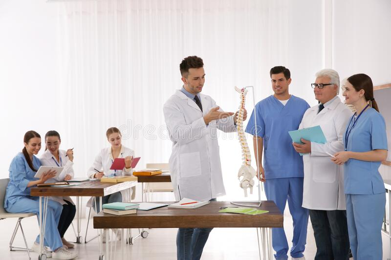 Medical students and professor studying human spine structure stock image
