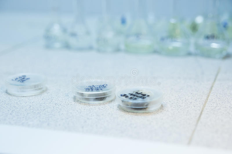 Medical test tubes on the table royalty free stock images