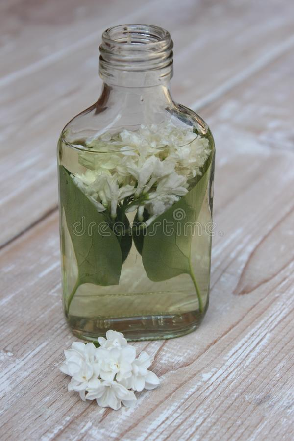 Tincture of lilac flowers. Medical tincture from flowers of white lilac on boards stock photos