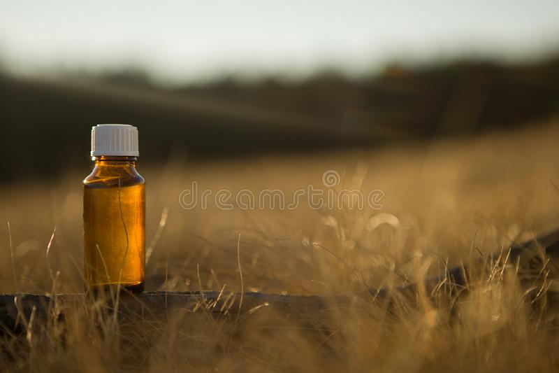 Medicin naturel, homéopathie - bouteille ambre photos libres de droits