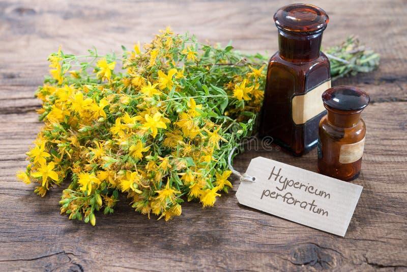 Medicina alternativa, fitoterapia fotografia de stock royalty free