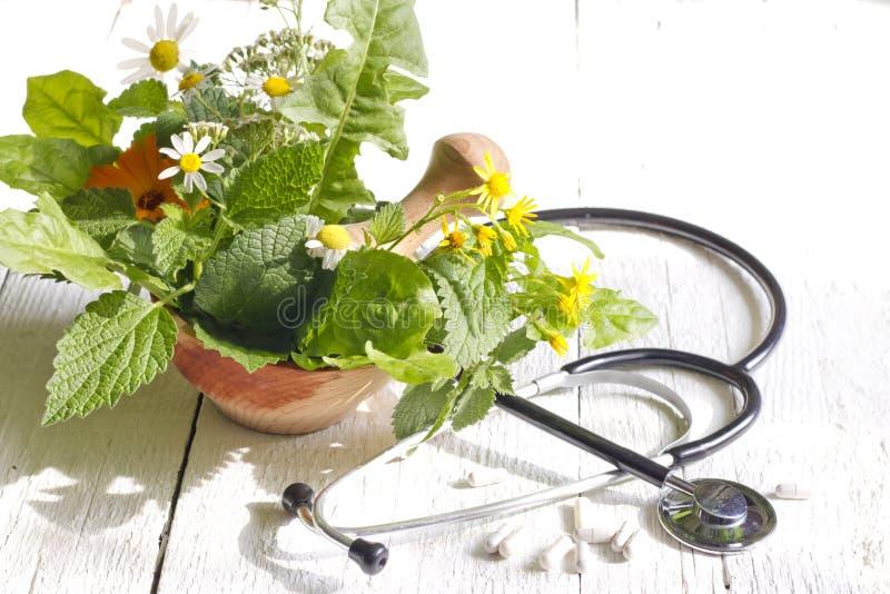 Medicina alternativa fresca dello stetoscopio e dell'erba fotografia stock