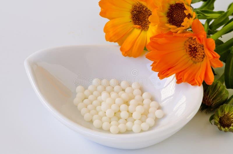 Medicina alternativa homeopathy Globuli della calendula fotografia stock libera da diritti
