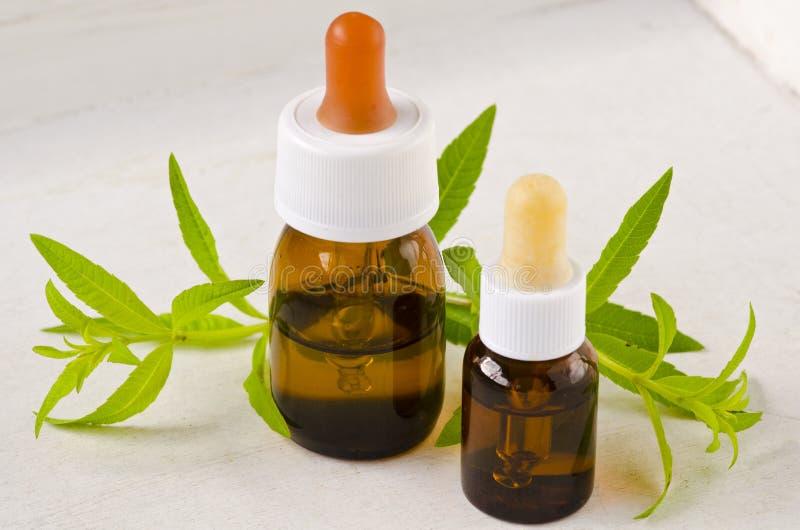 Medicina alternativa Olio essenziale della verbena del limone fotografia stock