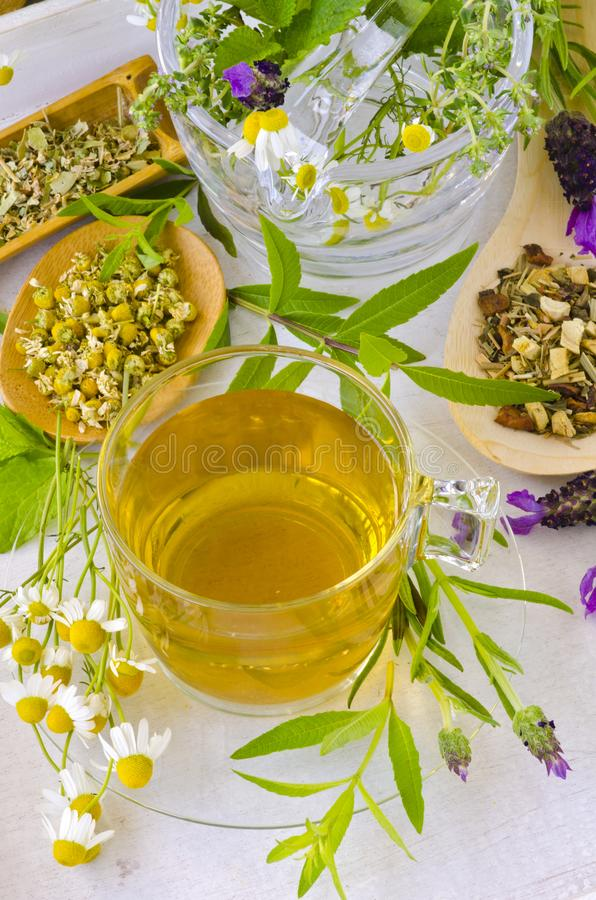 Medicina alternativa Terapia di erbe fotografie stock