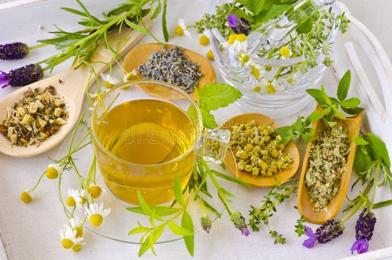 Medicina alternativa Terapia erval foto de stock