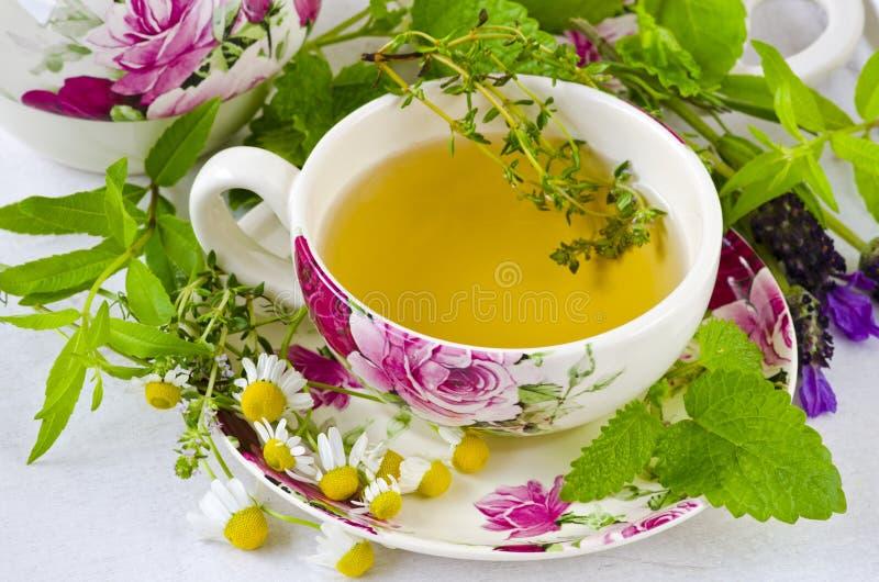 Medicina alternativa Terapia erval Infusão de plantas curas fotos de stock royalty free