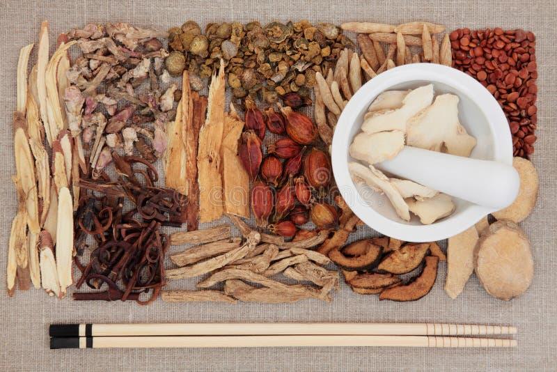 Medicina china tradicional fotos de archivo libres de regalías