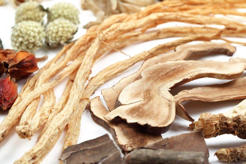 Medicina chinesa tradicional fotos de stock