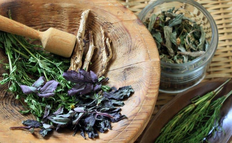 Medicina di erbe immagini stock