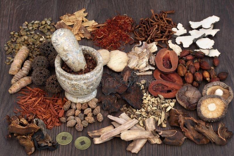 Medicina di erbe del cinese tradizionale fotografie stock libere da diritti