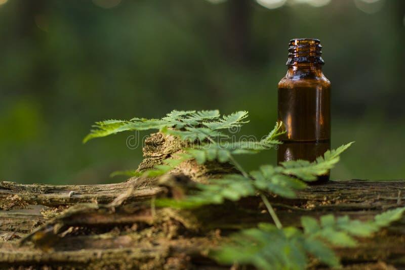 Medicina erval, alternativa - espaço para o texto fotos de stock