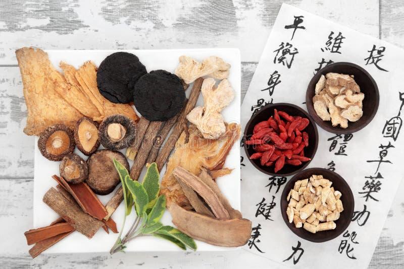 Medicina herbaria china imagen de archivo libre de regalías