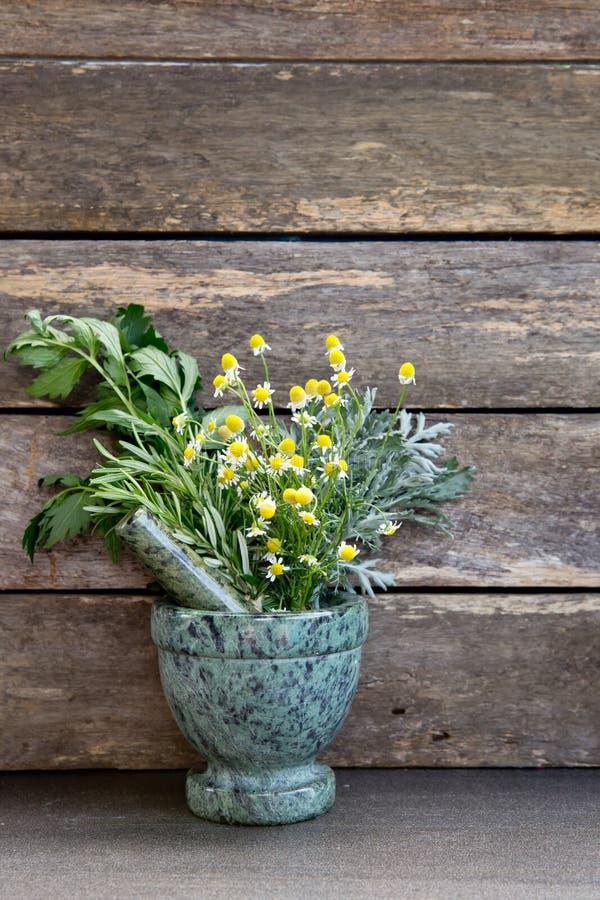 Medicina herbaria - manojos frescos de hierbas en mortero de mármol verde imágenes de archivo libres de regalías