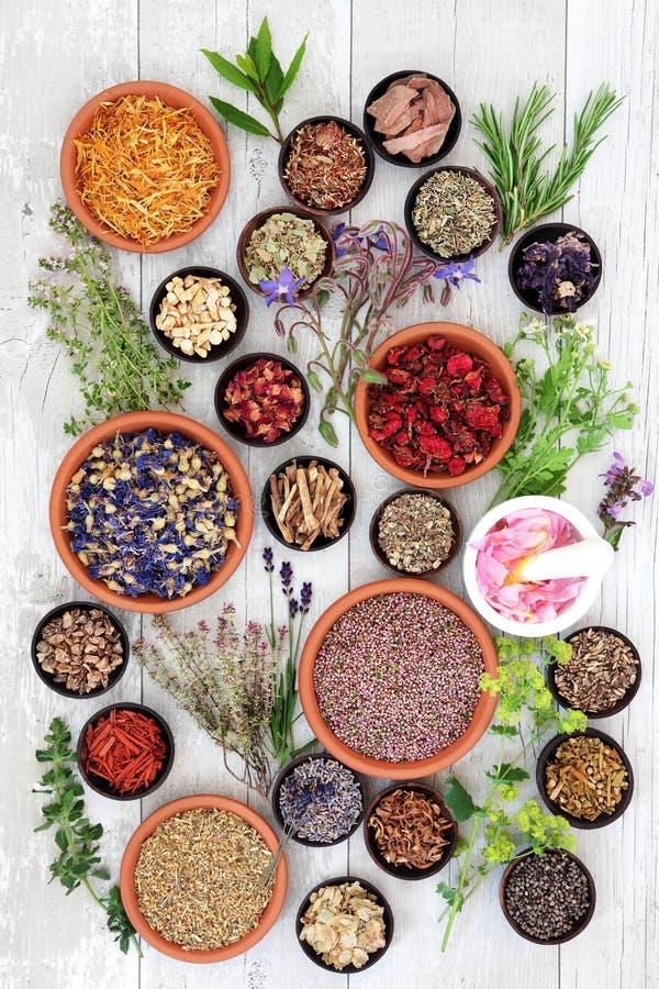 Medicina herbaria natural fotos de archivo