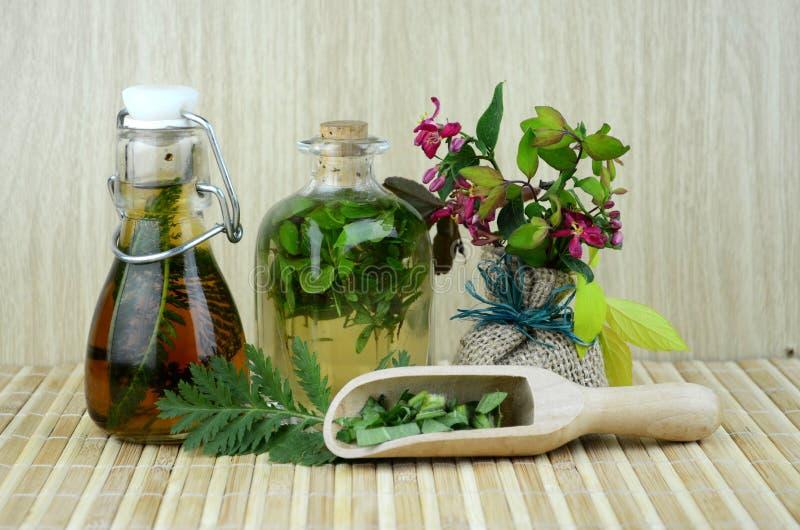 Medicina herbaria natural de los tintes imágenes de archivo libres de regalías