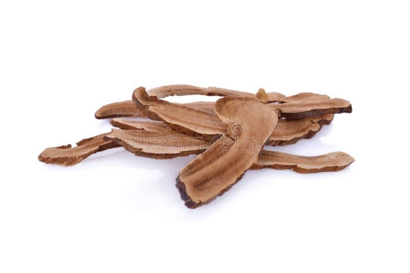 Medicina tradicional china secada de la seta del lingzhi en b blanco foto de archivo