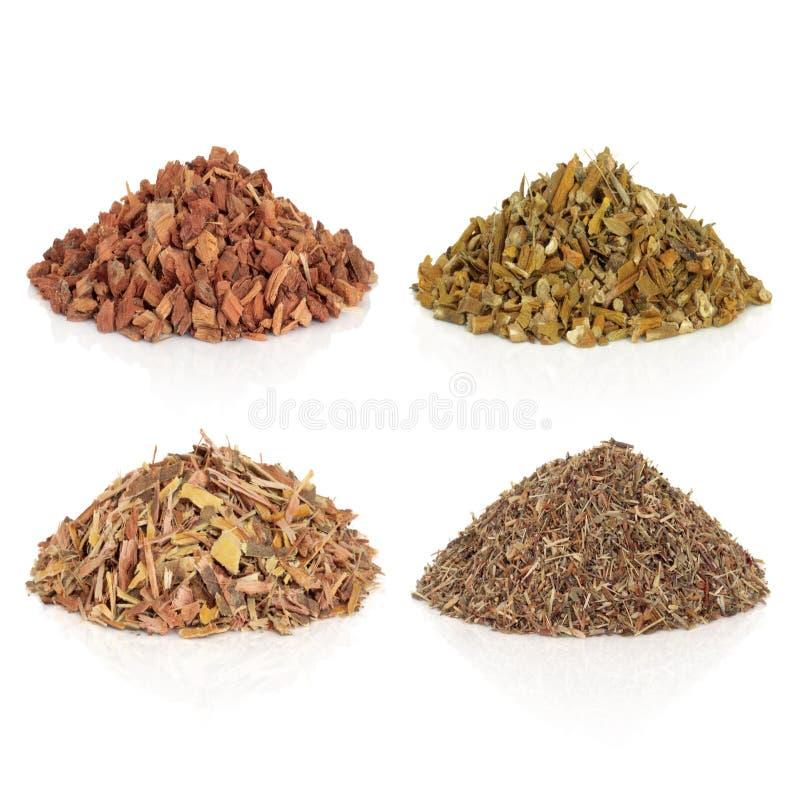 Free Medicinal And Magical Herbs Stock Photos - 12277993
