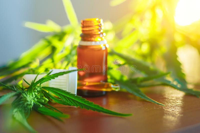 Medicinal cannabis CBD with extract oil in a bottle. Concept of herbal alternative medicine, CBD oil. Glass bottles with hemp oil royalty free stock photo