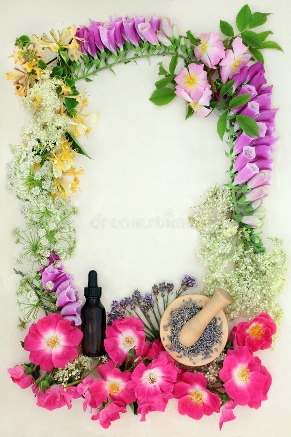 Medicinal Flower Border royalty free stock photos