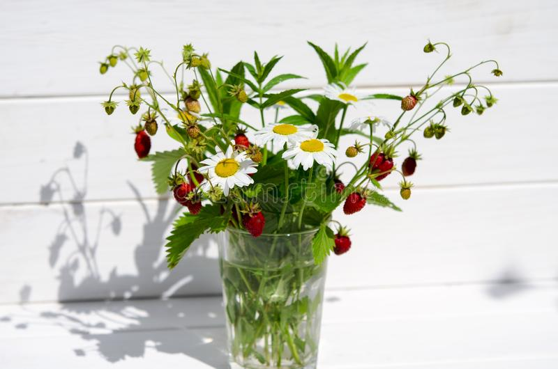 Medicinal herbs: Branches of red ripe strawberries, white daisies and mint leaves stand in a glass of water on a wooden stump. Against the background of green stock images