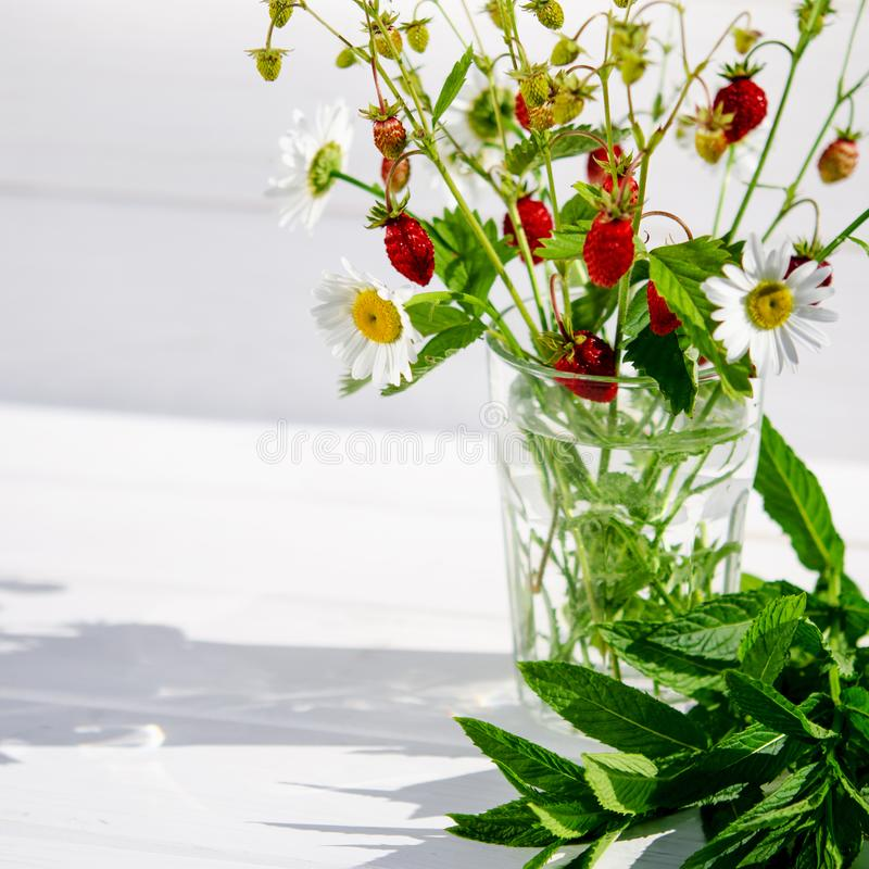 Medicinal herbs: Branches of red ripe strawberries, white daisies and mint leaves stand in a glass of water on a wooden stump. Against the background of green stock photography