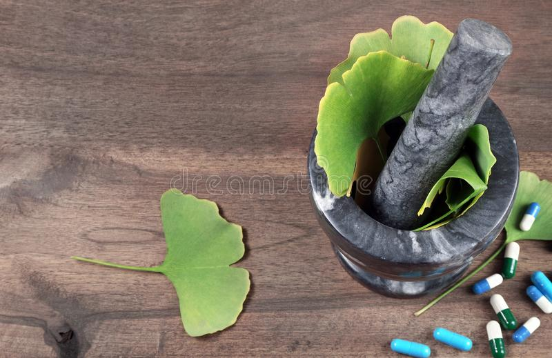 Medicinal herbs. ginkgo biloba. Ginkgo biloba leaves in a mortar with pestle on a wooden table. alternative medicine. cooking herb stock images