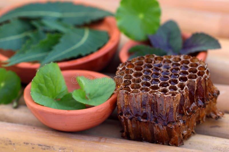 Medicinal herbs with honey comb royalty free stock photos