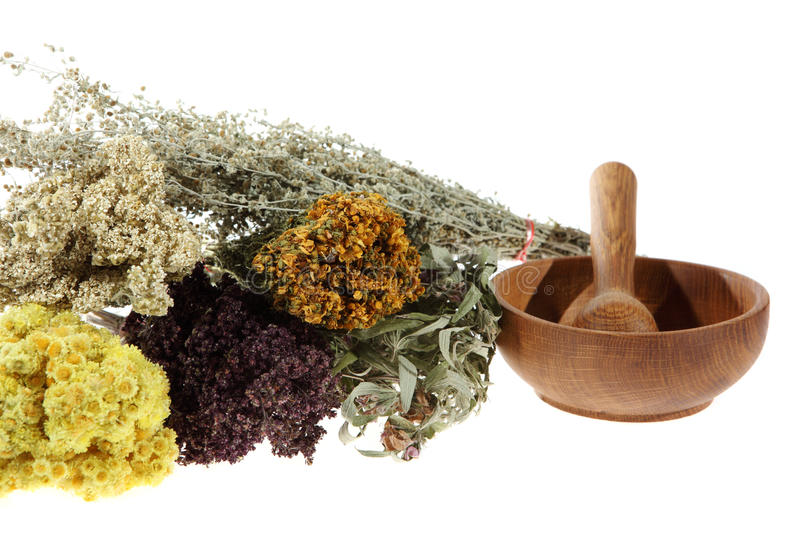 Download Medicinal Herbs On The White Background Stock Image - Image: 20910323