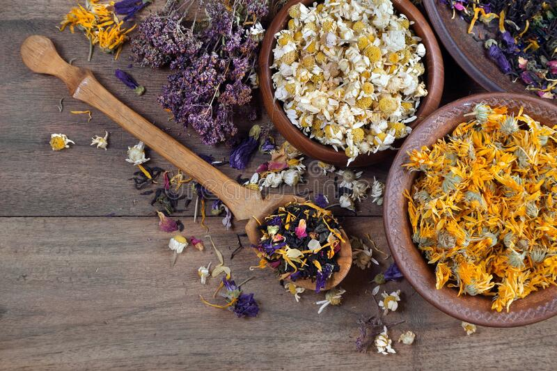 Medicinal herbs on a wooden table. dried flowers of medicinal chamomile. dried flowers of chamomile and calendula in bowls. medici stock images