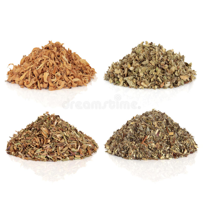 Medicinal and Magical Herbs. Used to make potions and cast spells, orange blossom, mullein, hyssop and mugwort, isolated over white background. Top left to stock image