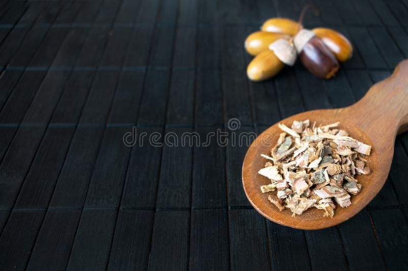 Medicinal plant oak (Quercus) in brown wooden spoon on the background of acorns with copy space. Branch, tincture and oak bark in stock photo