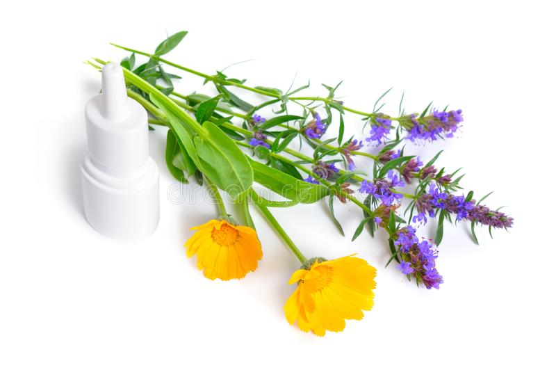Medicinal plants Calendula and Hyssop with Nose spray. Isolated on white.  royalty free stock photos