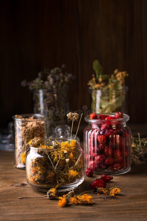 Medicinal Tea Blanks. Dry herbs and berries. Medicinal Tea Blanks stock photography