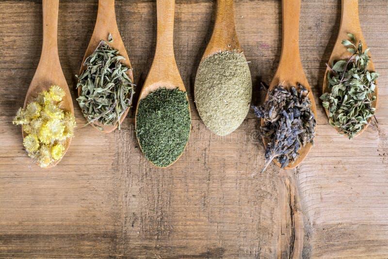 medicinal torkade örtar royaltyfria bilder