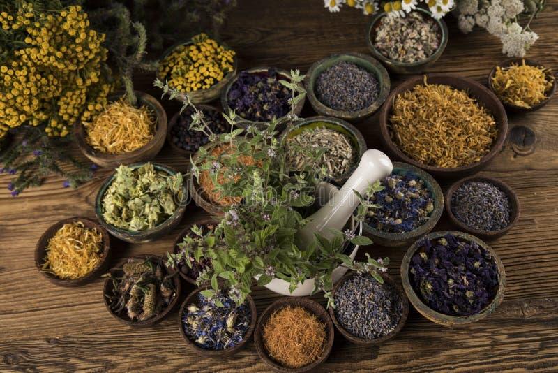 Medicinali per erbe e fondo di legno di vintage fotografia stock